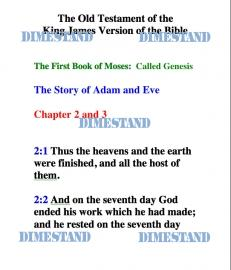 Genesis Chapter 2 and 3 The Story of Adam and Eve